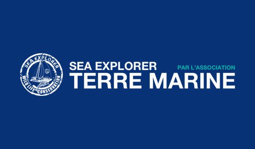 Sea Explorer – Terre Marine : navigations participatives et solidaires sur un catamaran
